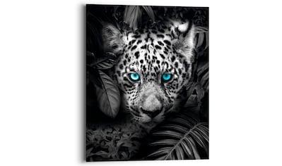 Reinders! Holzbild »Blue Eyed Leopard«, (1 St.) kaufen