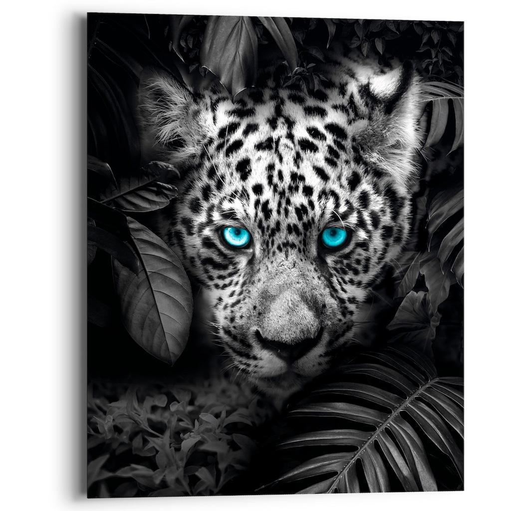 Reinders! Holzbild »Blue Eyed Leopard«, (1 St.)