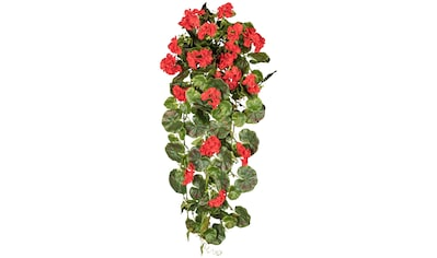 Creativ green Kunstpflanze »Geranienhänger« (1 Stück) kaufen