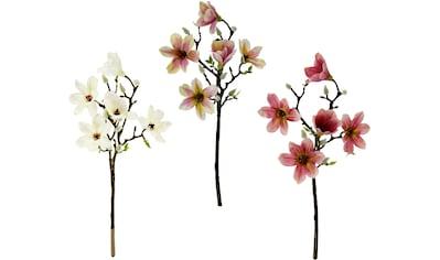 my home Kunstblume »Maira«, 3er Set kaufen