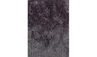 Fellteppich, »Mia«, ASTRA, rechteckig, Höhe 50 mm, maschinell gewebt kaufen