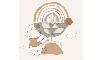 Komar Fototapete »Winnie Pooh Grow«, bedruckt-Comic-Retro-mehrfarbig, BxH: 300x280 cm kaufen