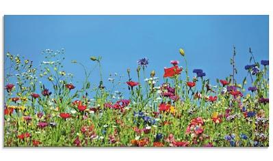 Artland Glasbild »Blumenwiese II«, Blumenwiese, (1 St.) kaufen
