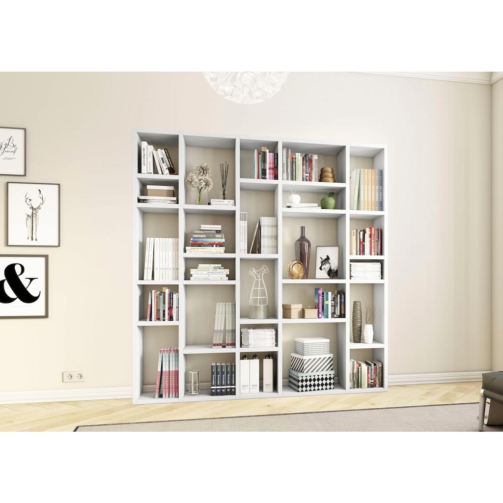 fif möbel Raumteilerregal »TORO 382«, Breite 214 cm