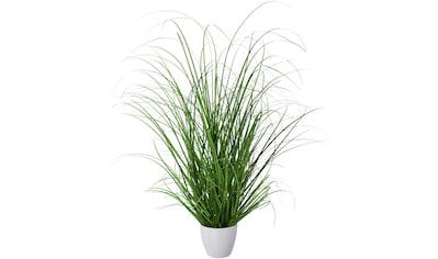 Creativ green Kunstgras »Grasbusch« (1 Stück) kaufen