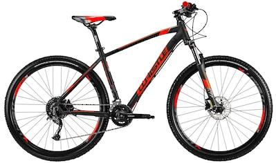 Whistle Mountainbike »Miwok 2052«, 18 Gang Shimano Alivio Schaltwerk, Kettenschaltung kaufen