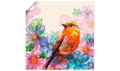 Artland Wandbild »Florale Karte im Retro Design«, Vögel, (1 St.), in vielen Größen &... kaufen
