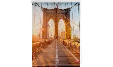 LICHTBLICK Seitenzugrollo »Klemmfix Motiv Brooklyn Bridge«, Lichtschutz, ohne Bohren, freihängend, bedruckt kaufen