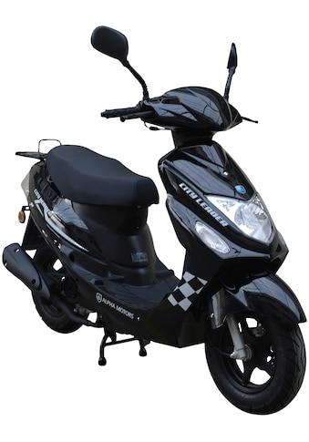 Alpha Motors Motorroller »CityLeader«, 2,5 PS, 50 ccm, 45 km/h, rot kaufen