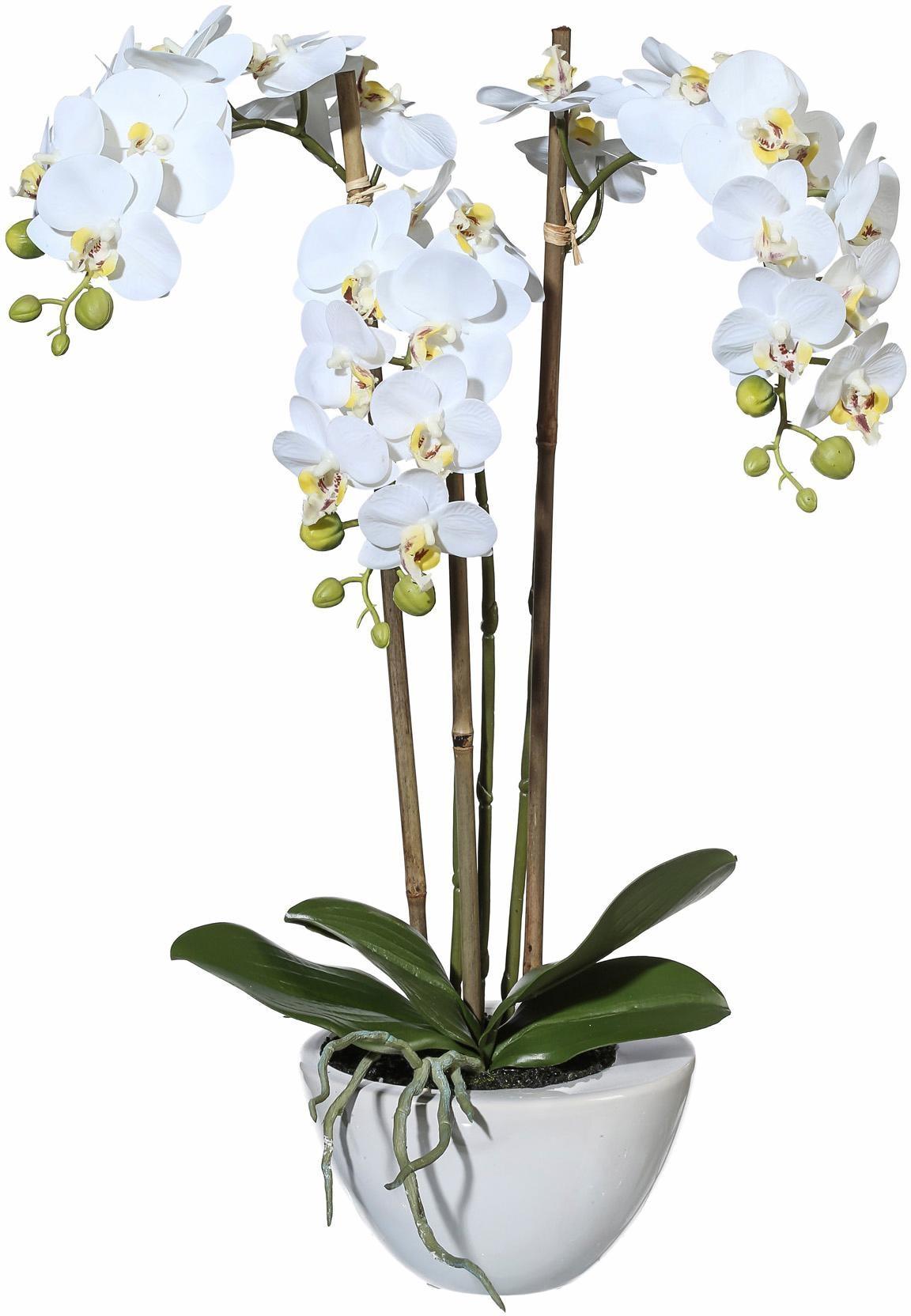 Kunstpflanze Mini Orchidee Technik & Freizeit/Heimwerken & Garten/Garten & Balkon/Pflanzen/Kunstpflanzen/Kunst-Orchideen