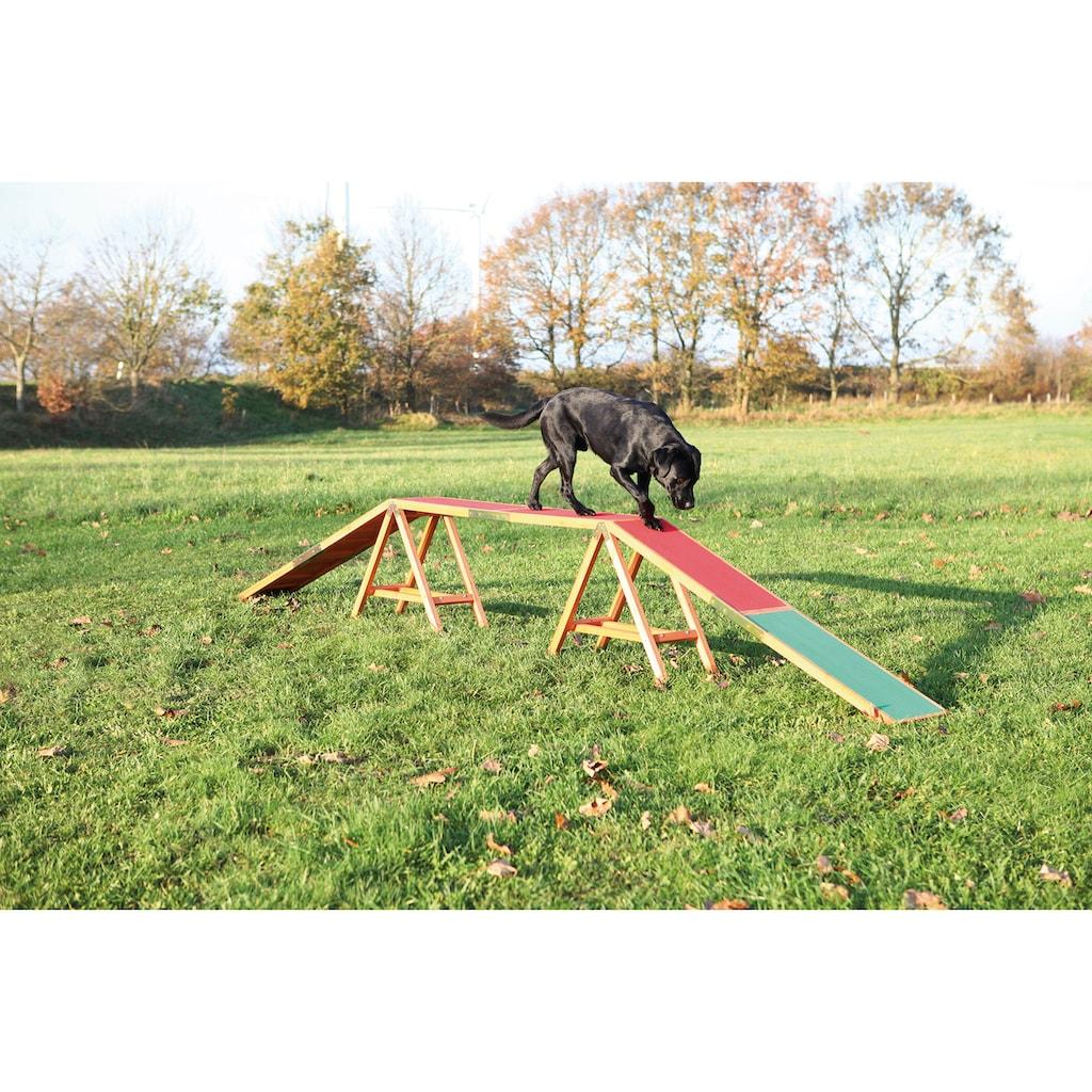 Trixie Hunde Agility Steg, L/B/H: 456/30/64 cm
