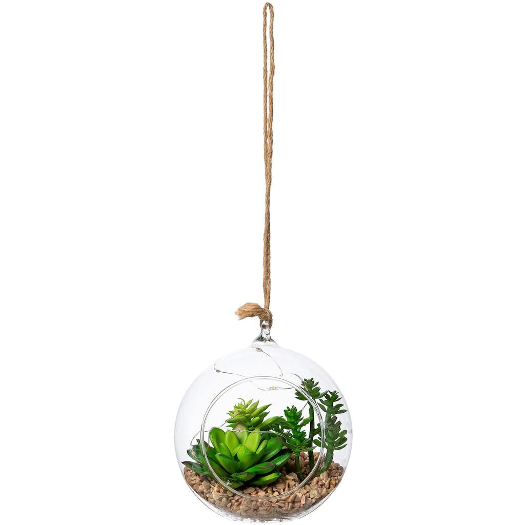 Creativ green Künstliche Zimmerpflanze »Sukkulenten-Mix mit LED-Beleuchtung«, Glasgefäß mit LED, zum Stellen oder Hängen geeignet