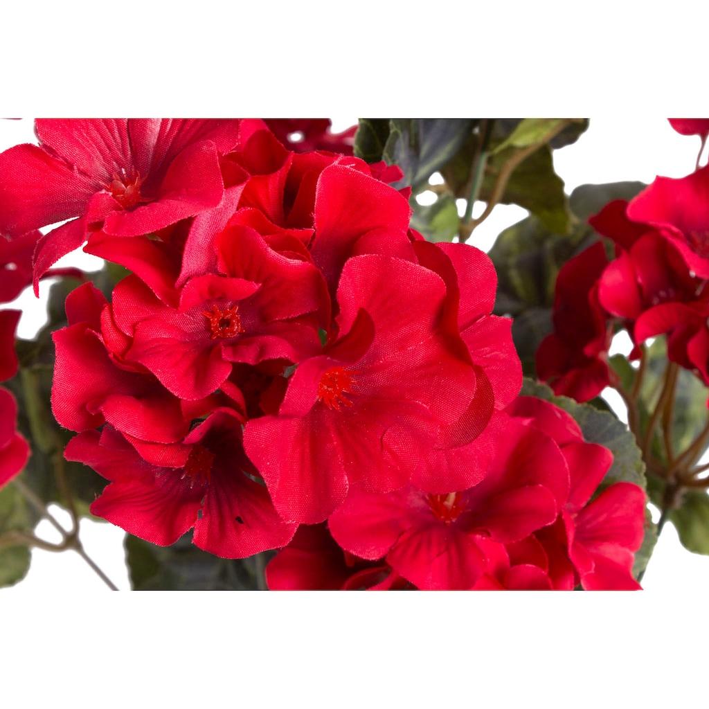 Botanic-Haus Kunstblume »Geranienbusch groß getopft«