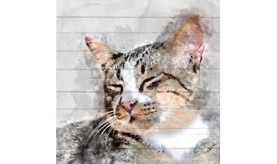 queence Holzbild »Verwaschene Katze«, 40x40 cm kaufen