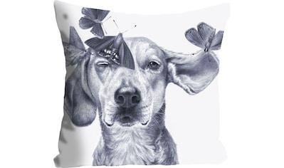 queence Kissenhülle »Buttercup«, (1 St.), mit einem Hund und Schmetterlingen kaufen