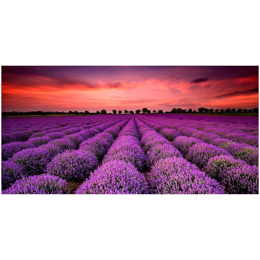 Art & Pleasure Holzbild »Lavender sunset«, Sonnenaufgang & -untergang