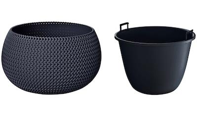 Prosperplast Pflanzkübel »Splofy Bowl«, ØxH: 37x21 cm kaufen