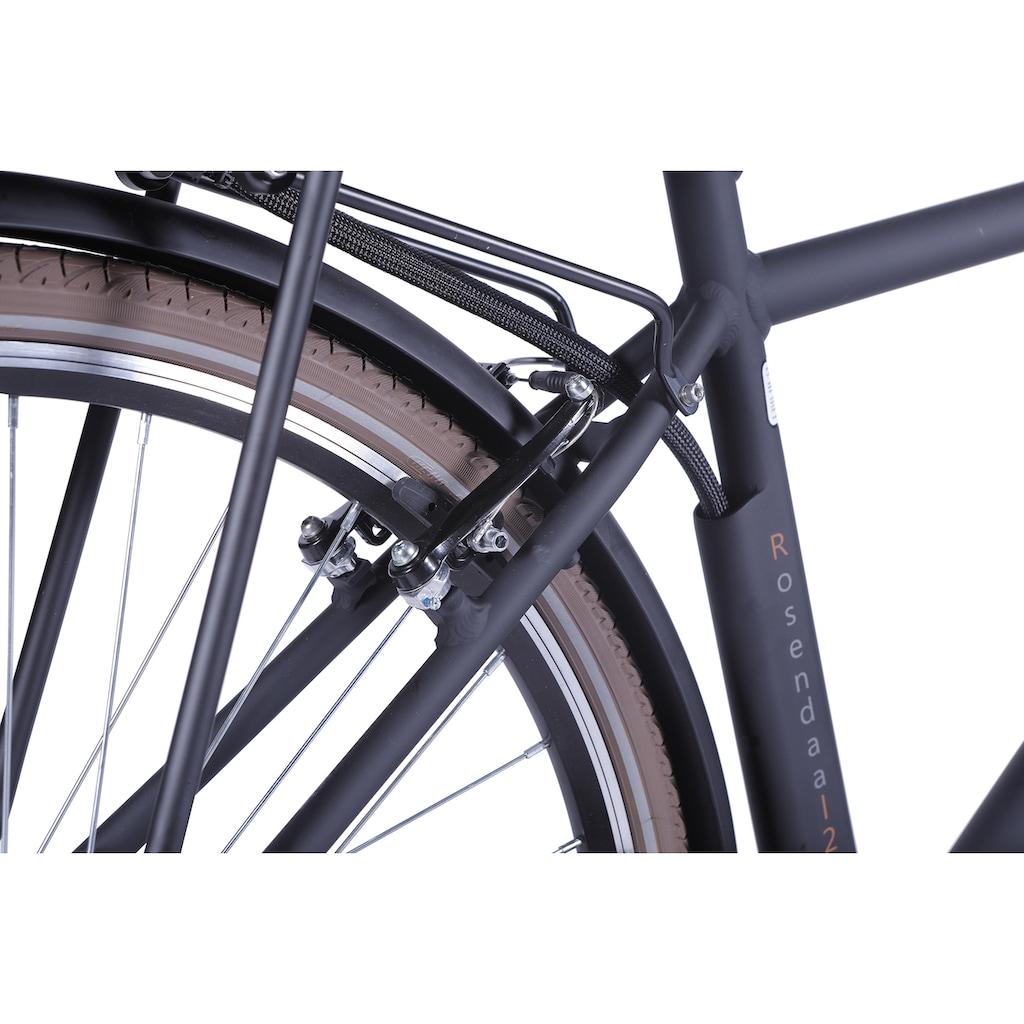 LLobe E-Bike »Rosendaal Gent 15,6 Ah«, 3 Gang, Frontmotor 250 W, Gepäckträger vorne