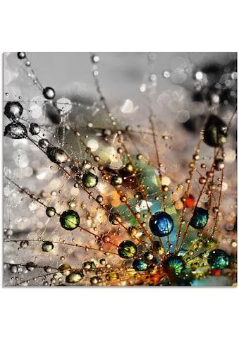 Artland Glasbild »Farbenfrohe Natur« kaufen