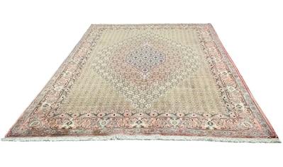 morgenland Wollteppich »Senneh Teppich handgeknüpft grau«, rechteckig, 12 mm Höhe kaufen