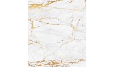 WENKO Küchenrückwand »Marmor«, gehärtetes Glas, 60x70 cm kaufen