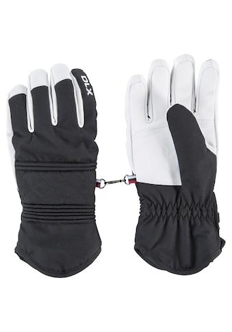 Trespass Multisporthandschuhe »Damen Handschuhe Derigi« kaufen