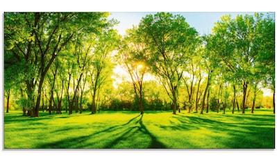 Artland Glasbild »Frühlingswärme II«, Wiesen & Bäume, (1 St.) kaufen