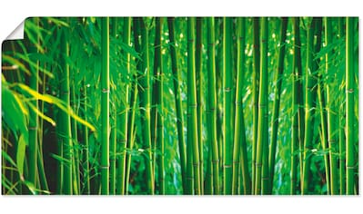 Artland Wandbild »Bambus II«, Gräser, (1 St.), in vielen Größen & Produktarten... kaufen