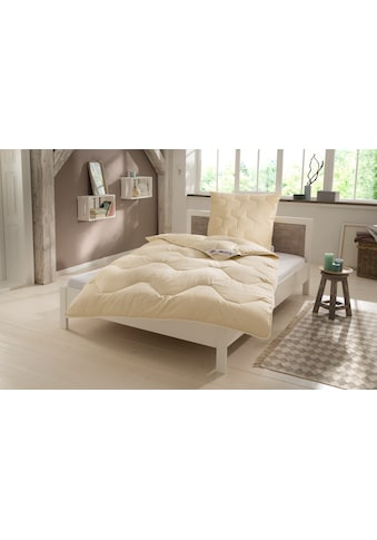my home Naturfaserbettdecke + Kopfkissen »Baumwolle 60 °C«, (Spar-Set, (4-Tlg.)), natürlich gut schlafen in reiner Baumwollqualität kaufen