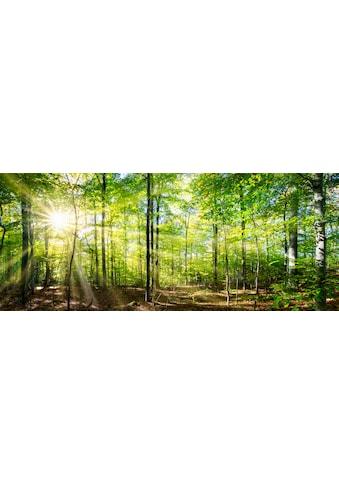 """Marmony Infrarotwandheizung »MOTIV-Heizkörper """"Forest"""", 800 Watt«, trocknet Wände und... kaufen"""