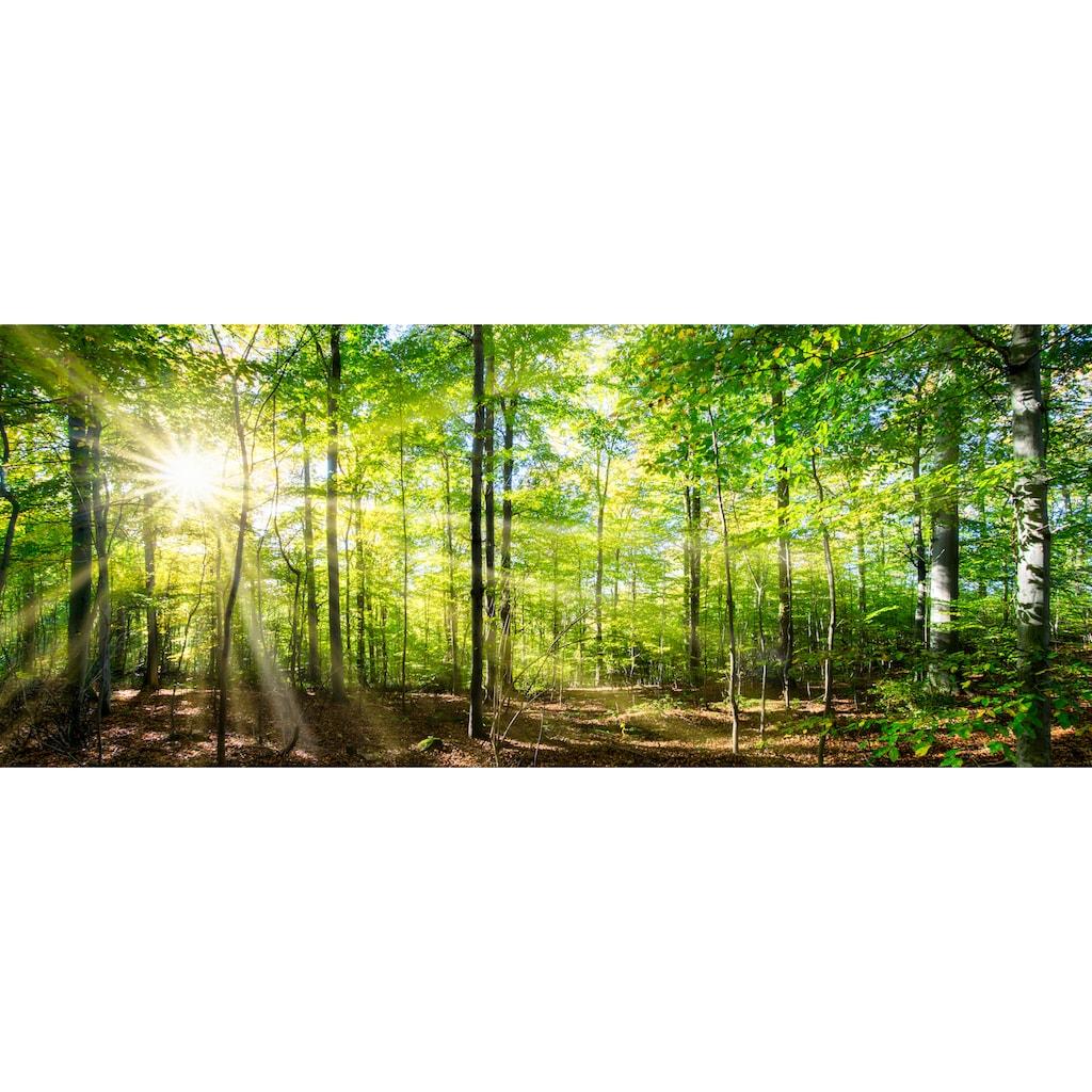 """Marmony Infrarotwandheizung »MOTIV-Heizkörper """"Forest"""", 800 Watt«, trocknet Wände und Mauerwerk, aus deutschem Jura-Naturstein"""