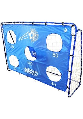 Fußballtor »mit Torwand 5 Schusslöcher«, (Set), sehr stabil, 213x152 cm kaufen