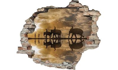 queence Wandtattoo »Elefanten« (1 Stück) kaufen