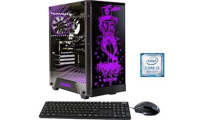 Hyrican »Rockstar 6546« Gaming - PC (Intel®, Core i5, RX 550, Luftkühlung) kaufen