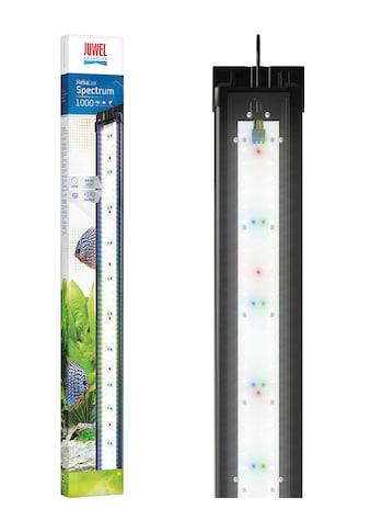 JUWEL AQUARIEN LED Aquariumleuchte »HeliaLux Spectrum 1000« kaufen