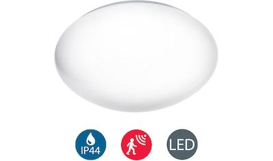 B.K.Licht,LED Deckenleuchte»Polaris«, kaufen