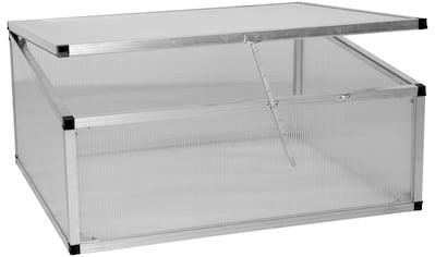 KGT Frühbeet , BxTxH: 103x91x40 cm kaufen