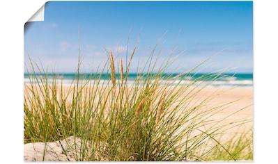 Artland Wandbild »Dünengras«, Strand, (1 St.), in vielen Größen & Produktarten -... kaufen