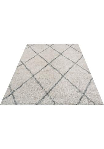 andas Hochflor-Teppich »Aliano«, rechteckig, 30 mm Höhe, Wohnzimmer kaufen