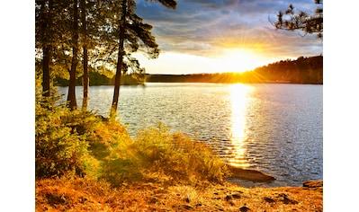 PAPERMOON Fototapete »Algonquin Park Lake«, Vlies, in verschiedenen Größen kaufen