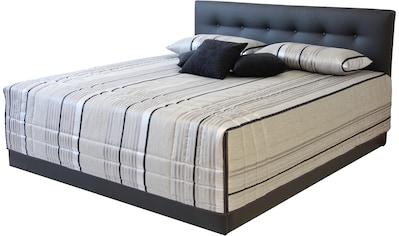 Westfalia Schlafkomfort Polsterbett »Ravenna«, optional mit Bettkasten kaufen