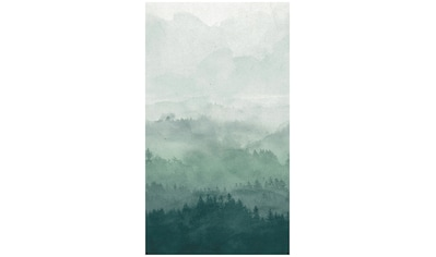 BODENMEISTER Fototapete »Effekt Nebel Wald grün«, Rolle 2,80x1,59m kaufen