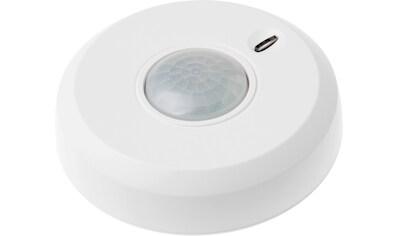 LUPUS ELECTRONICS Smart Home Zubehör »360 Grad PIR Bewegungsmelder« kaufen