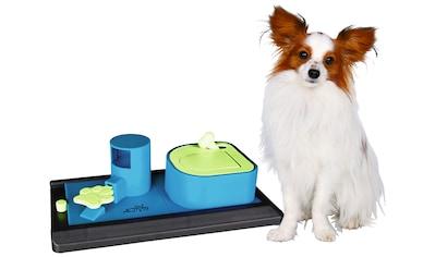 Trixie Hundespielzeug »Poker Box Vario Strategiespiel« kaufen