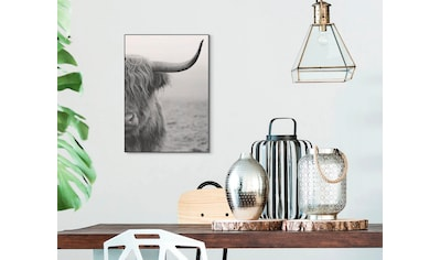 Wandbild »Slim Frame Black 50x70 Highlander« kaufen