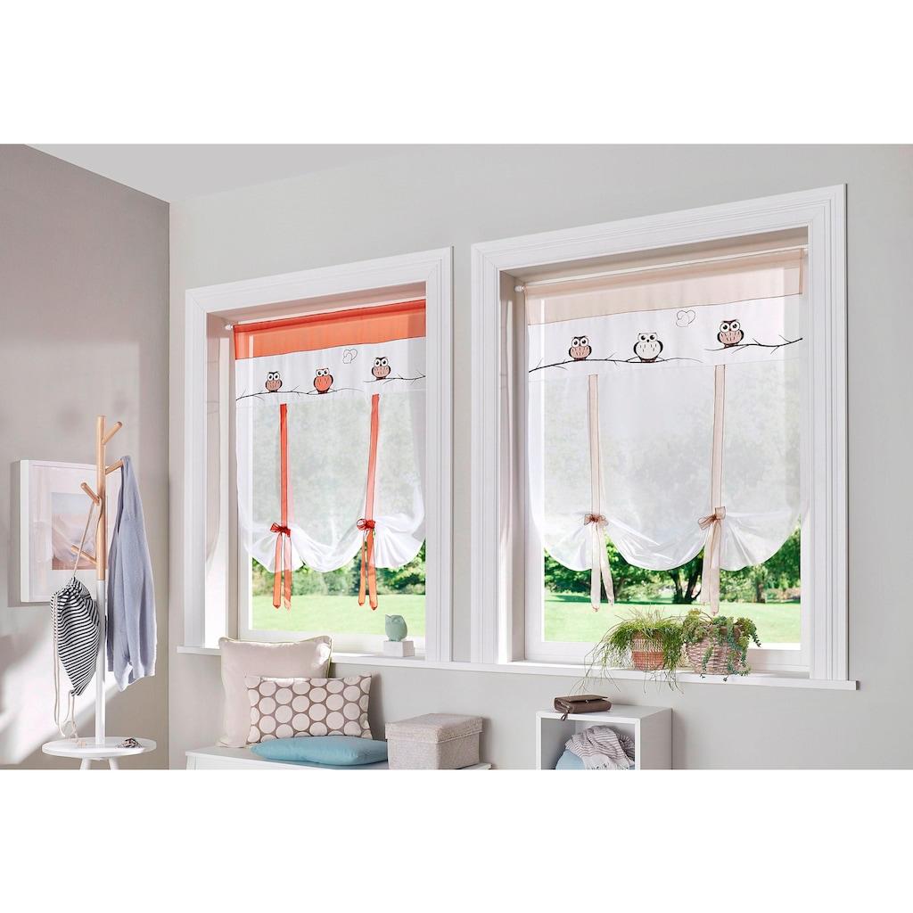 my home Scheibengardine »Java«, Fertiggardine, transparent