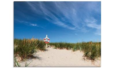 Artland Glasbild »Dünen am Meer«, Strand, (1 St.) kaufen