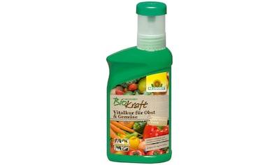 Neudorff Pflanzenstärkungsmittel »BK Vitalkur für Obst & Gemüse«, 0,3 l kaufen