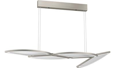 EVOTEC LED Pendelleuchte »MOVIL«, LED-Board, Warmweiß-Neutralweiß-Tageslichtweiß, LED Hängelampe, LED Hängeleuchte, Farbwechsel kaufen
