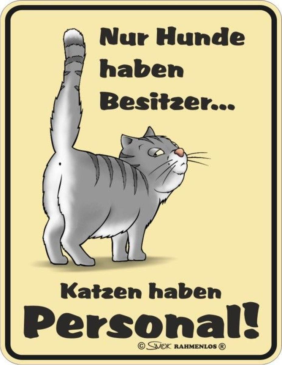 Rahmenlos Blechschild mit lustigem Katzen-Motiv